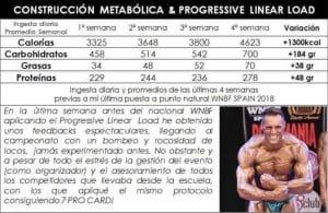 Construccion metabolica