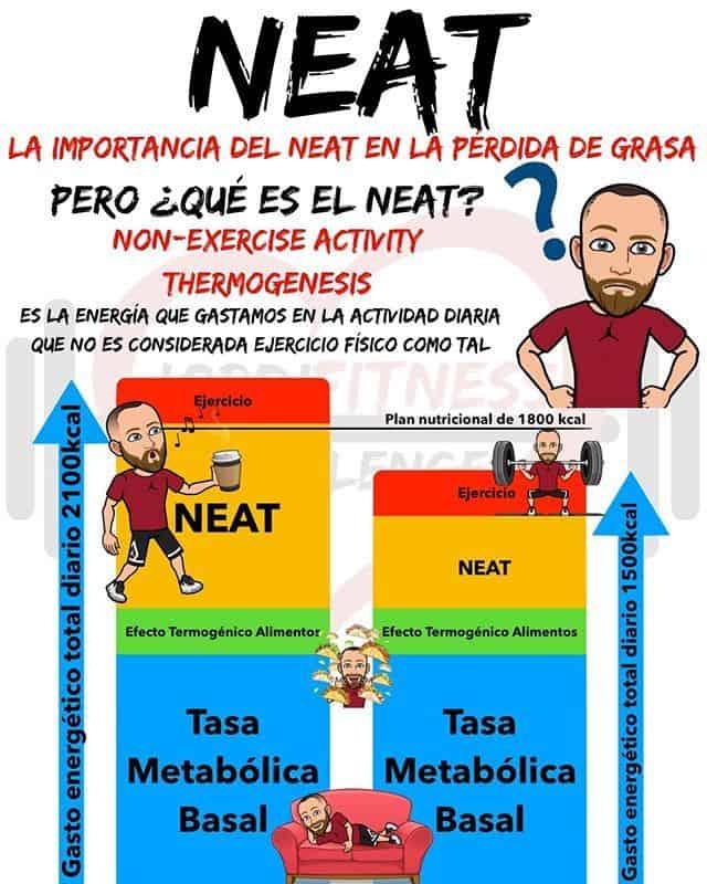 NEAT Dieta ejercicio