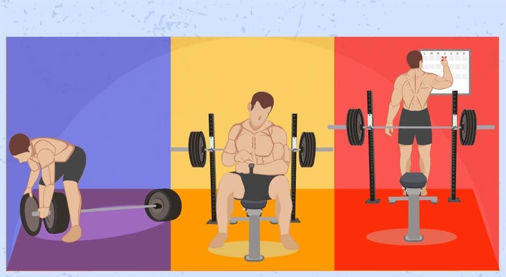 Volumen de entrenamiento ejercicio gimnasio