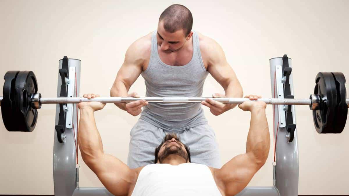 pectoral entrenamiento muscular