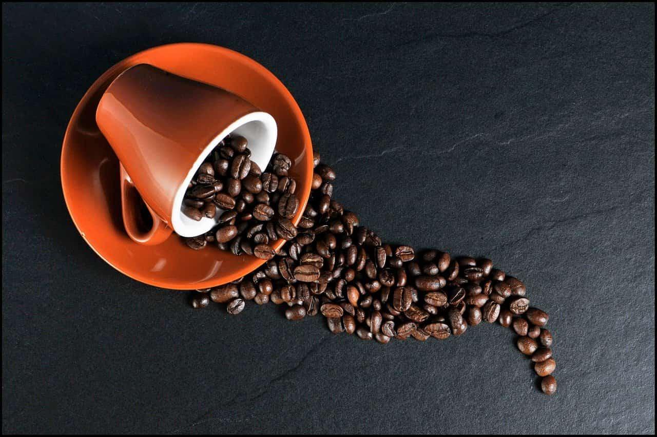 suplementación cafe cafeina