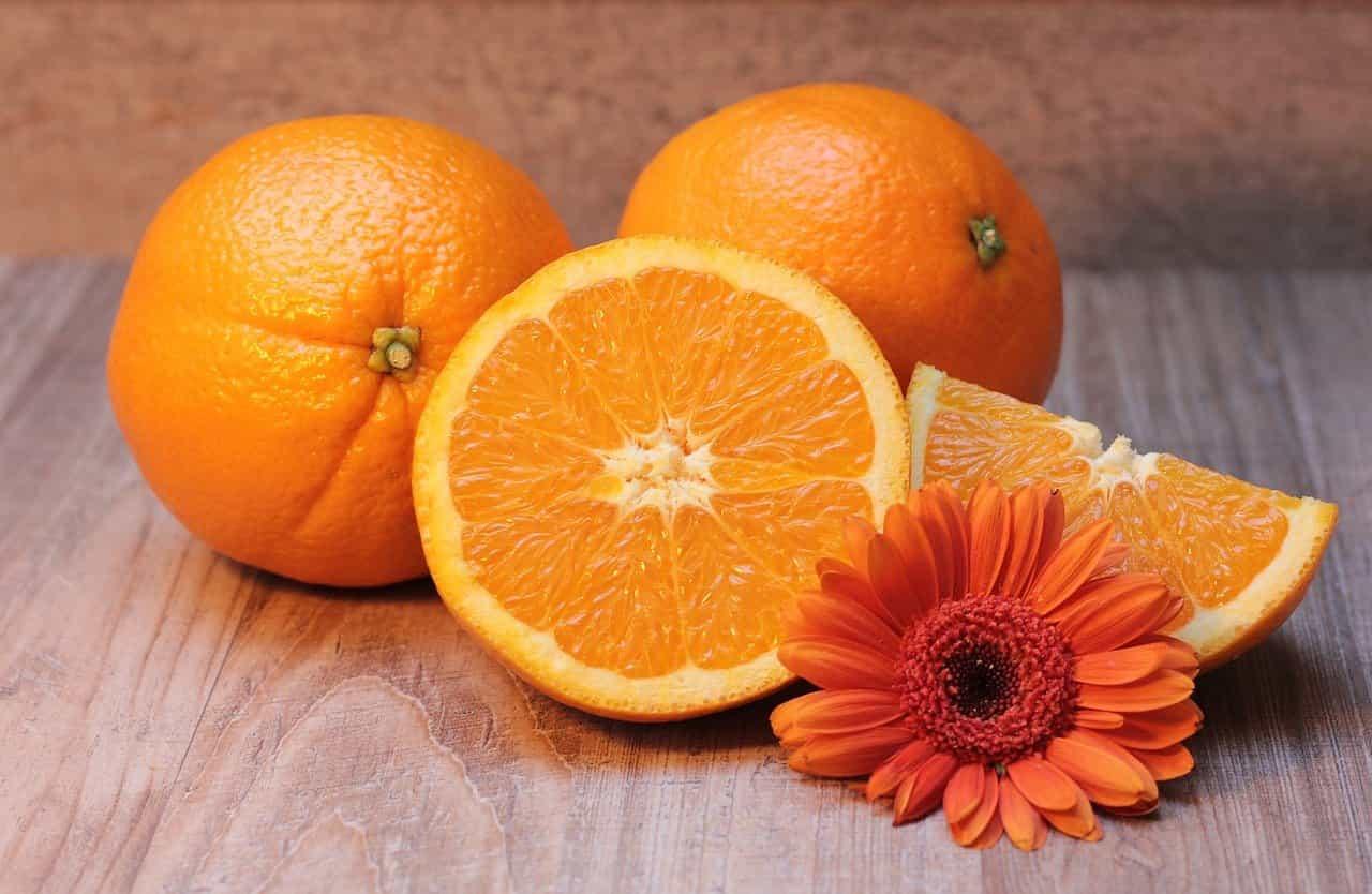 suplementación dieta vitaminas